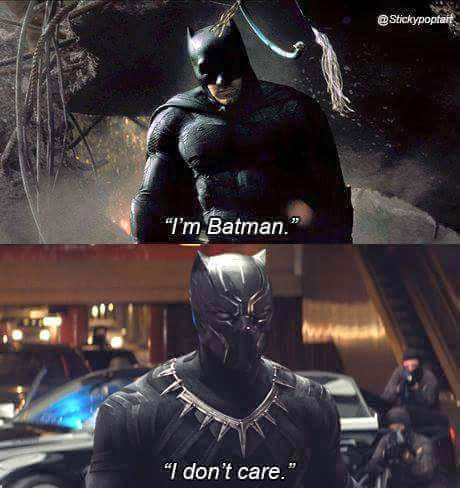 Panther Batman