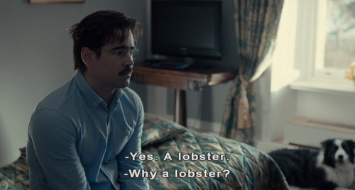 Lobster quote 1